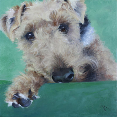 "Welsh Terrier, Happiness Is,  Dog, Art, Pet, Portrait, Fine Art, Oil, Painting, Custom, Commission Your Own, Happiness Is,   The ""Happiness is"" series title is derived from the classic ""Peanuts"" comic strip statement 'Happiness is a warm puppy'. I began the series creating gifts of dog portraits of family and friends' furry companions. Now many of the paintings are available as canvas prints, reproductions start at $50 and magnets of your favs are just $3. Ideal for homes and the lobbies and interiors of any animal related business (vet clinics, grooming, boarding, supplies etc) or organization (aspca, humane society, rescues, shelters, etc). A portion of each print sale goes to no-kill shelters and rescues to help animals find their people. If anyone is of interest in learning more about what we can do for their space just contact me."