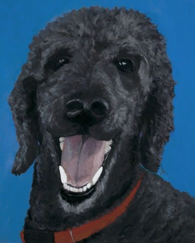 "Standard Poodle, Happiness Is,  Dog, Art, Pet, Portrait, Fine Art, Oil, Painting, Custom, Commission Your Own, Happiness Is,   The ""Happiness is"" series title is derived from the classic ""Peanuts"" comic strip statement 'Happiness is a warm puppy'. I began the series creating gifts of dog portraits of family and friends' furry companions. Now many of the paintings are available as canvas prints, reproductions start at $50 and magnets of your favs are just $3. Ideal for homes and the lobbies and interiors of any animal related business (vet clinics, grooming, boarding, supplies etc) or organization (aspca, humane society, rescues, shelters, etc). A portion of each print sale goes to no-kill shelters and rescues to help animals find their people. If anyone is of interest in learning more about what we can do for their space just contact me."