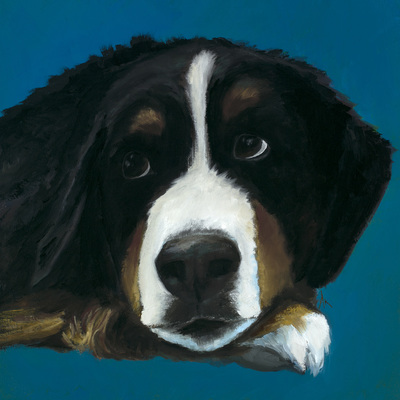 "Bernese, Happiness Is,  Dog, Art, Pet, Portrait, Fine Art, Oil, Painting, Custom, Commission Your Own, Happiness Is,   The ""Happiness is"" series title is derived from the classic ""Peanuts"" comic strip statement 'Happiness is a warm puppy'. I began the series creating gifts of dog portraits of family and friends' furry companions. Now many of the paintings are available as canvas prints, reproductions start at $50 and magnets of your favs are just $3. Ideal for homes and the lobbies and interiors of any animal related business (vet clinics, grooming, boarding, supplies etc) or organization (aspca, humane society, rescues, shelters, etc). A portion of each print sale goes to no-kill shelters and rescues to help animals find their people. If anyone is of interest in learning more about what we can do for their space just contact me."