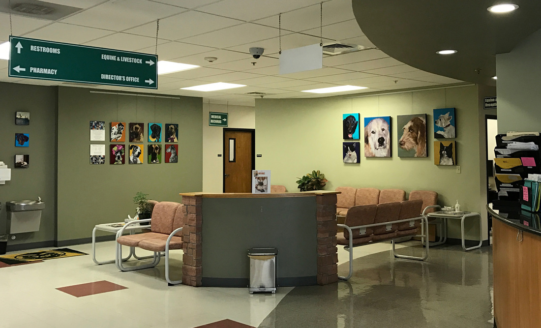 Selections from the series' Happiness Is (dogs) and Nine Lives (cats) are on display in the Lobby of the ​Colorado State University Veterinary Teaching Hospital​ in Fort Collins thru December 31st.